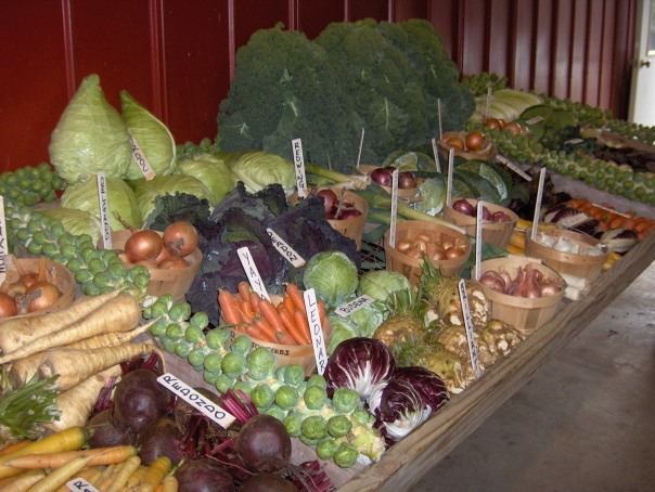 Cornucopia of Winter Vegetables, Bejo Seeds, Geneva, NY