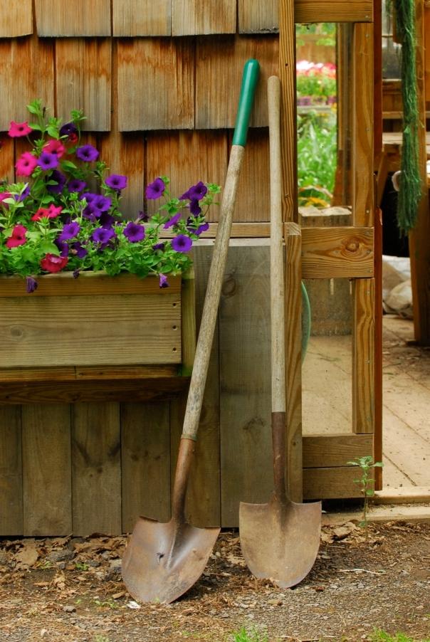 TTower garden house
